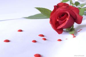 Because I love you...........(EXPLORE)