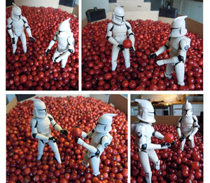 The Clones playing with lingonberries (Berättelse lingon)
