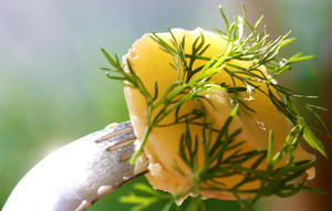 03. summer herbs