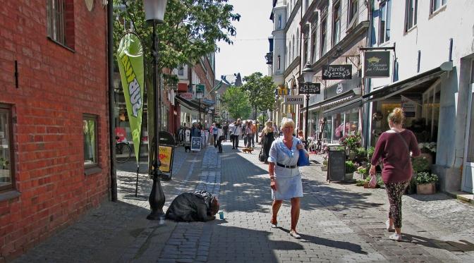 """""""Organiserat tiggeri"""" och den svenska polariserade debatten"""