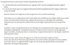 Skärmdump från Sverigedemokraternas hemsida.