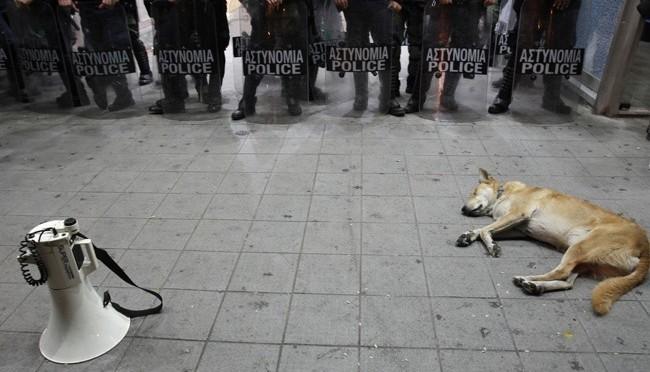 """Bilden med """"riot dog"""" är inte från Sverige"""
