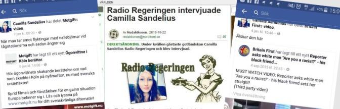 Camilla Sandelius, gotländska medborgargardet och nazismen