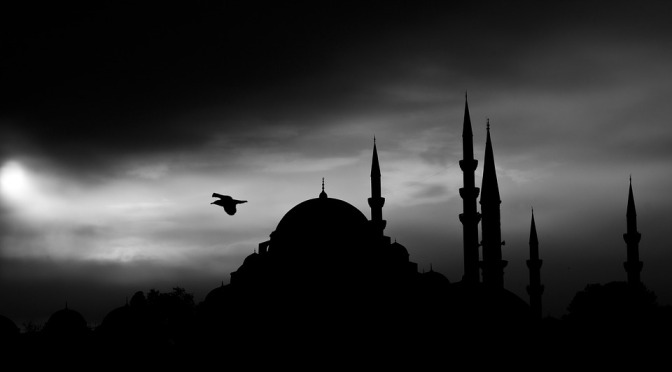 """Jomshof (SD): """"Islam är en avskyvärd religion"""""""
