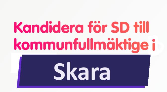 """SD efterlyser kommunpolitiker på Facebook: """"Det är inte så svårt att vara politiker"""""""
